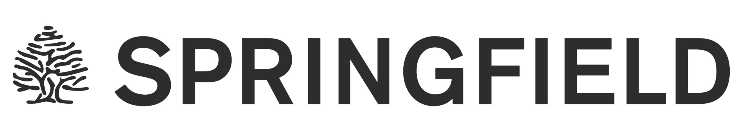Imágenes Logotipos Springfield   Tendam Global Fashion Retail